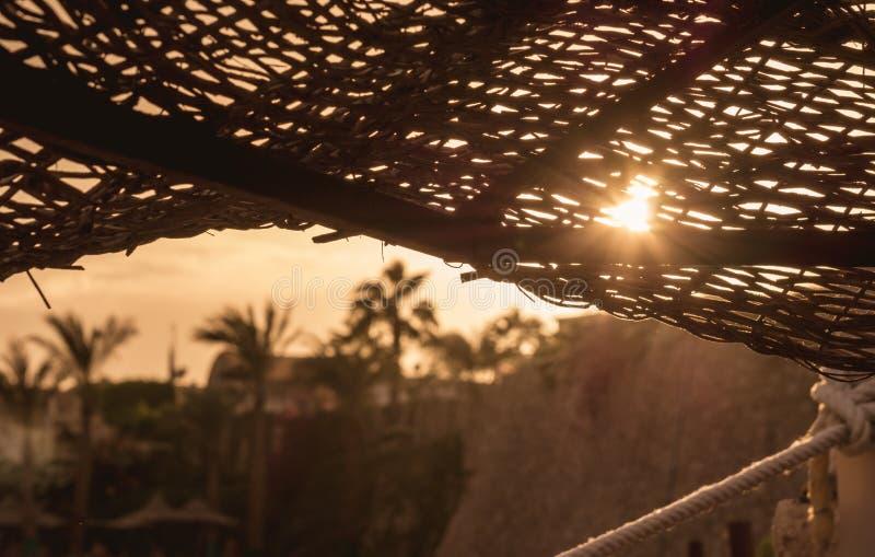 Strandparaply i solen på solnedgången arkivfoto
