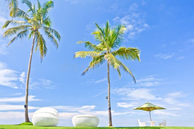 Strandparaply och Sunbath platser i ett tropiskt hotell som lokaliserade i Costal område Negambo, Sri Lanka arkivfoton