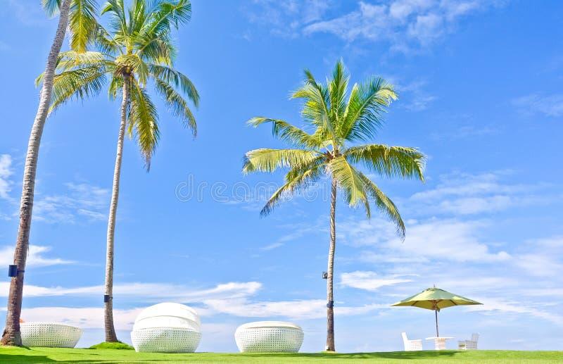 Strandparaply och Sunbath platser i ett tropiskt hotell som lokaliserade i Costal område Negambo, Sri Lanka royaltyfri bild