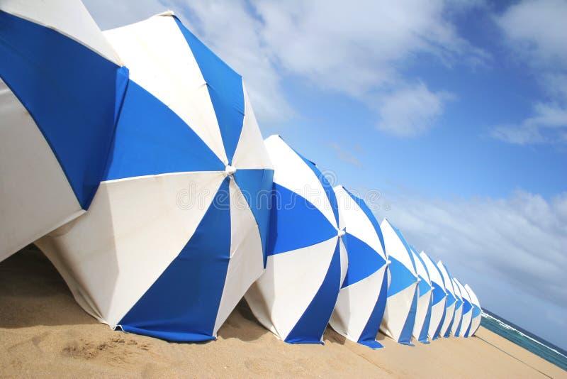 strandparaplyer arkivfoton