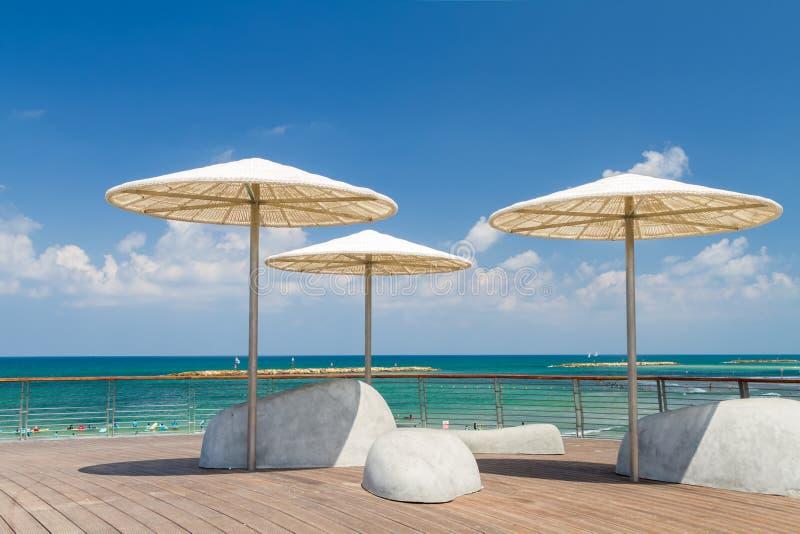 Strandparaplyer, promenad i Tel Aviv, Israel royaltyfri foto