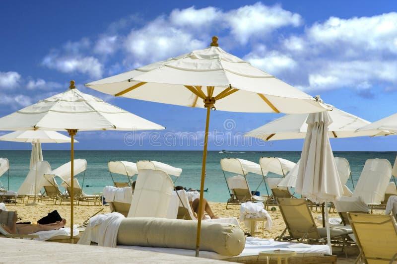 strandparaplywhite royaltyfria bilder