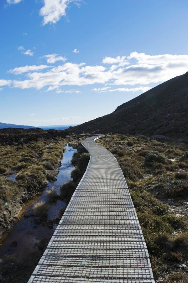 Strandpromenad till och med den Tongariro nationalparken, Nya Zeeland royaltyfria foton