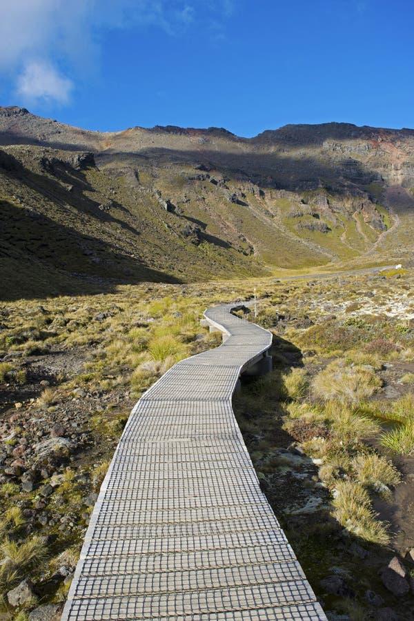Strandpromenad till och med den Tongariro nationalparken, Nya Zeeland arkivbild