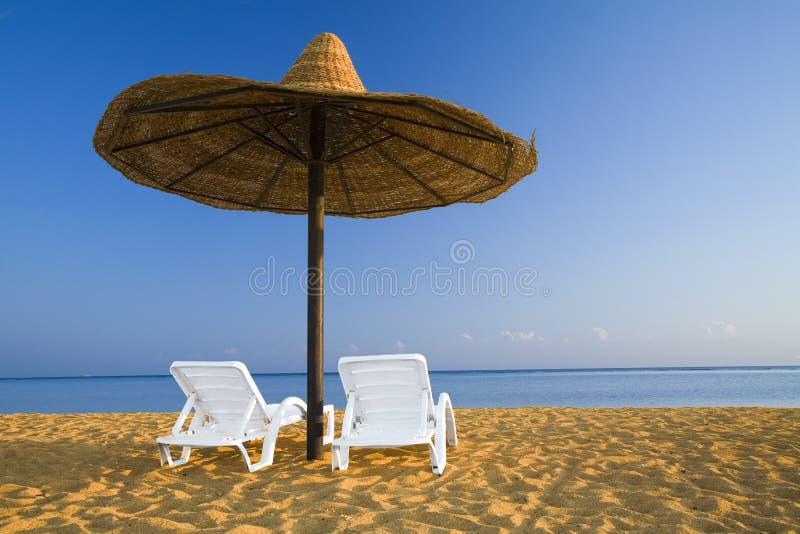 strandrest royaltyfri bild