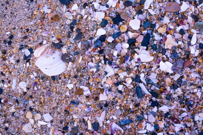 Strandrotsen van Carlsbad-Strand royalty-vrije stock fotografie