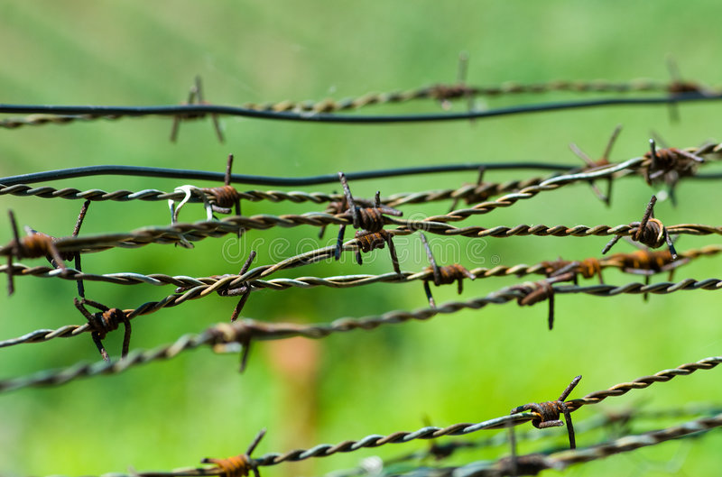 Download Strands of barbed wire stock image. Image of wire, rusted - 5621887