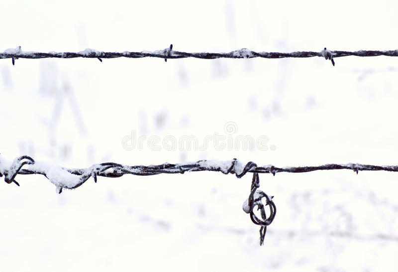 Download Strands Of Barbed Wire Fence In Snow Stock Photo - Image: 28414584