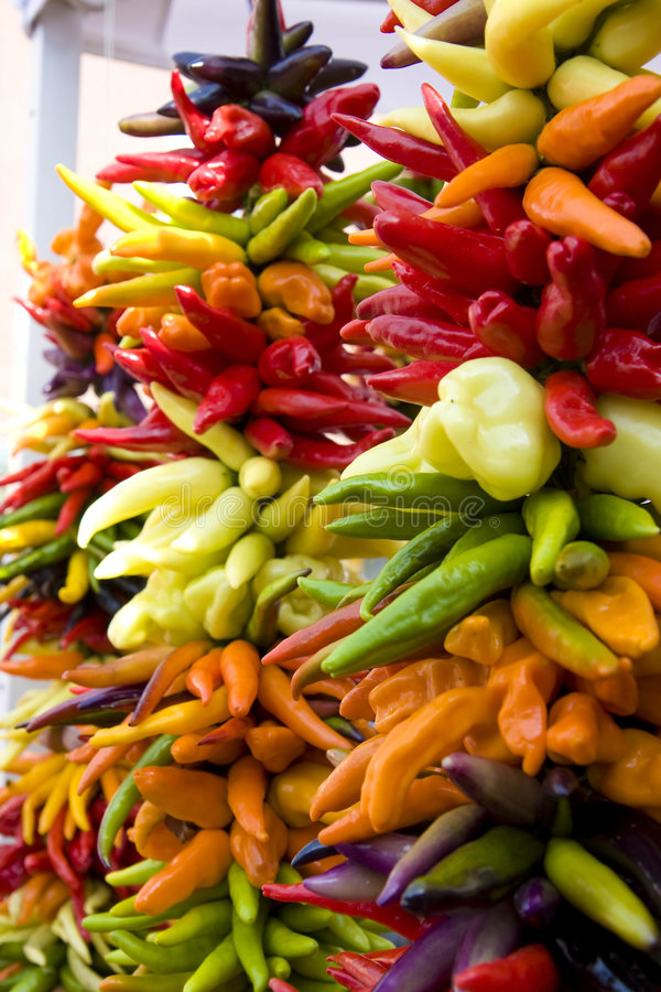 Download Strands Of Colorful Hot Peppers Stock Image - Image of peppers, vitamins: 8342937