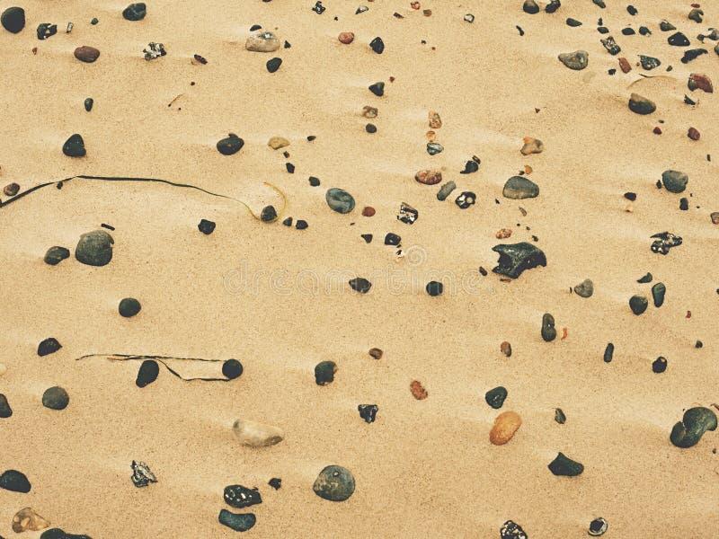 Strandsand med kiselstenar och skal Havskiselstenstenar arkivfoton