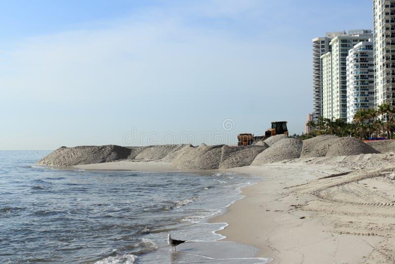 Strandsandföda som landskap kusten royaltyfri bild