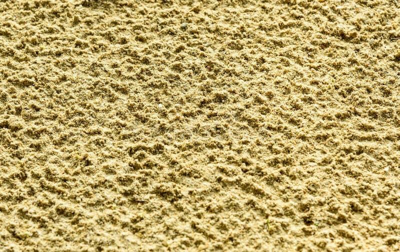 Strandsandyttersida efter regnet arkivbilder