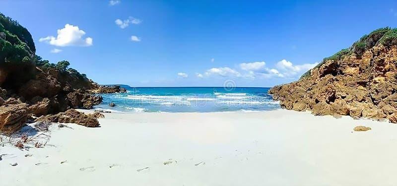 Strandskönhet i natur royaltyfria bilder