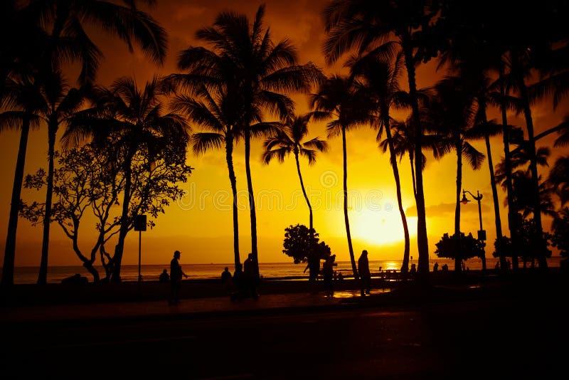 Strandsolnedgång på Waikiki royaltyfri foto