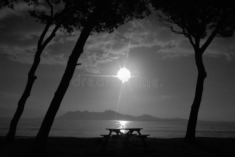 Strandsoluppgång i svartvitt royaltyfri fotografi