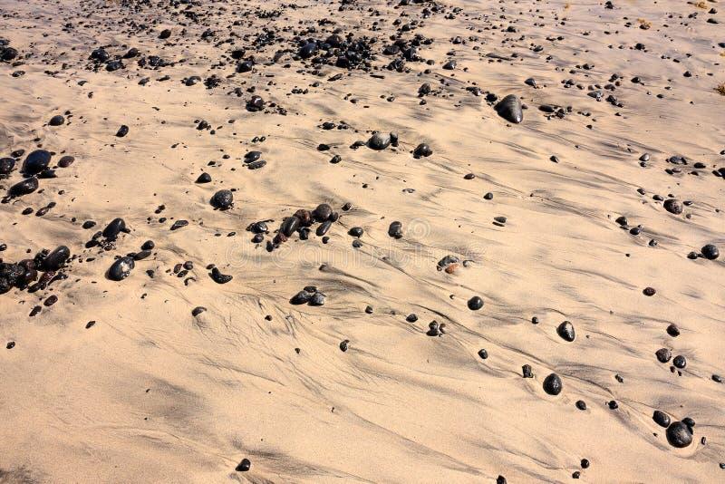 Strandstenar i sanden arkivfoton
