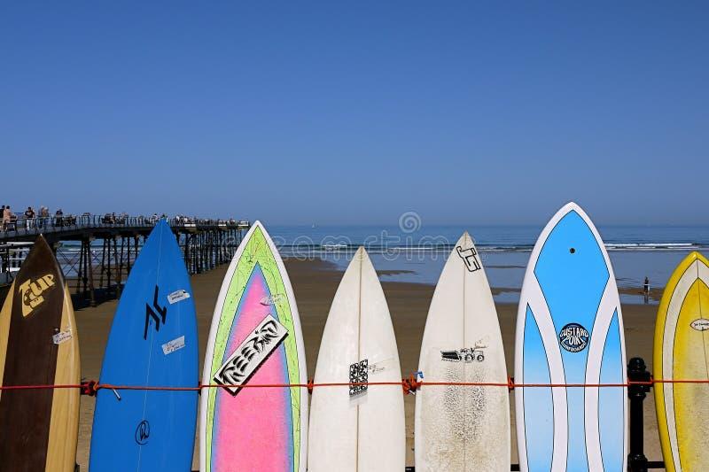 Strandsurfingbrädor och blå himmel royaltyfri foto