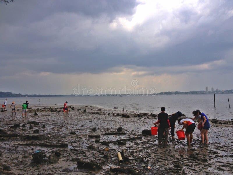 Strandtätigkeit - Singapur stockfotos