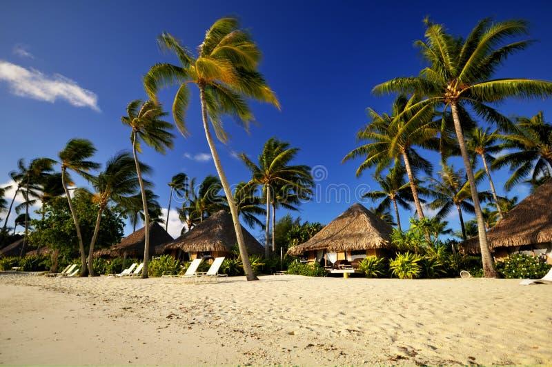 Strandtoevlucht met bungalowwen in Bora Bora stock afbeelding