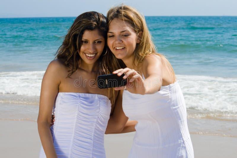 strandvängyckel som har fotografering för bildbyråer