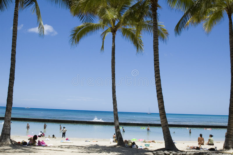 strandwakiki royaltyfria foton
