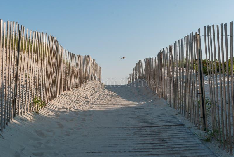 Strandweg in het strand van het zandduin Houten strandweg met houten omheiningen royalty-vrije stock fotografie