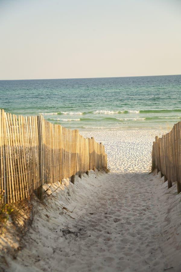 Strandweg neer aan oceaan royalty-vrije stock afbeeldingen