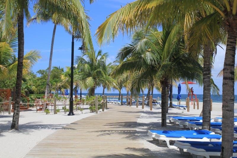 Strandweg in Oogst Caye, Belize royalty-vrije stock foto