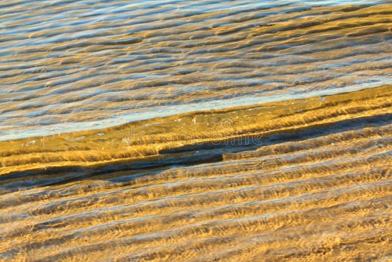 Strandwelle lizenzfreies stockbild