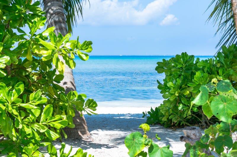 Strandzugang mit Meerblick bei Malediven stockfotografie