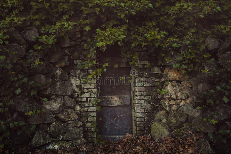 Strange door covered by ivy stock photos