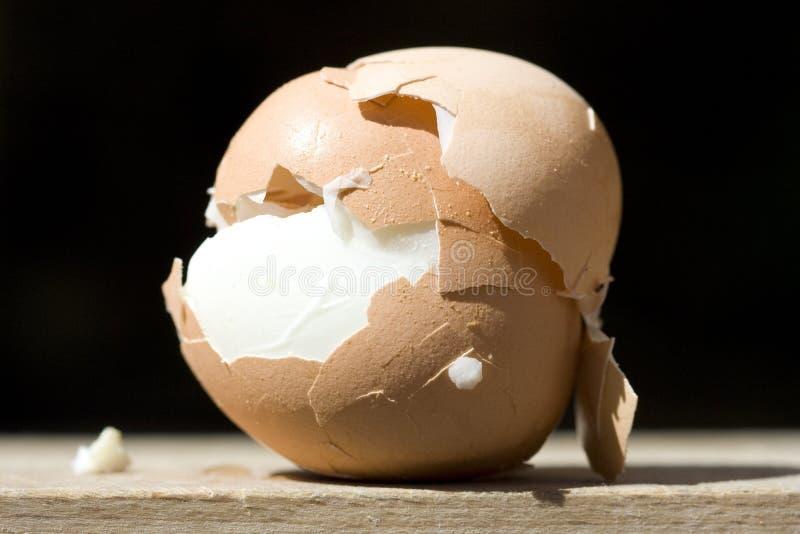 Strange egg royalty free stock image