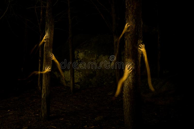 Dark hands in the darkness of the forest. Strange hands climbing up a tree in the dark forest stock image