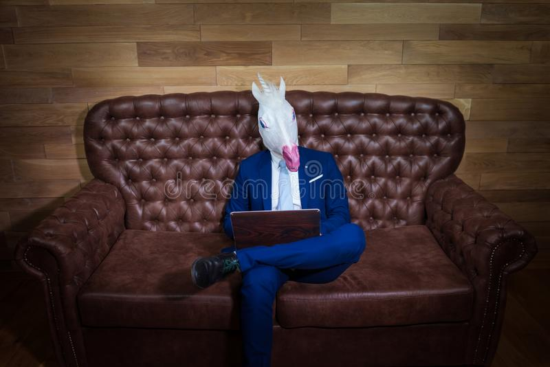 Strange man in elegant suit working at home office. Unusual young manager royalty free stock image