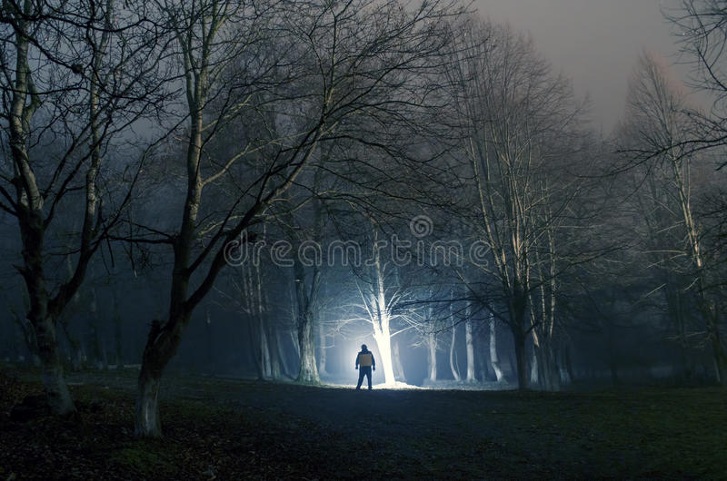 Strange silhouette in a dark spooky forest at night, mystical landscape surreal lights with creepy man royalty free stock photos