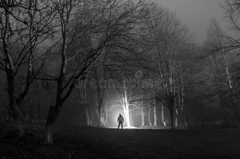 Strange silhouette in a dark spooky forest at night, mystical landscape surreal lights with creepy man royalty free stock photography