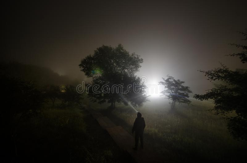 Strange silhouette in a dark spooky forest at night, mystical landscape surreal lights with creepy man royalty free stock images