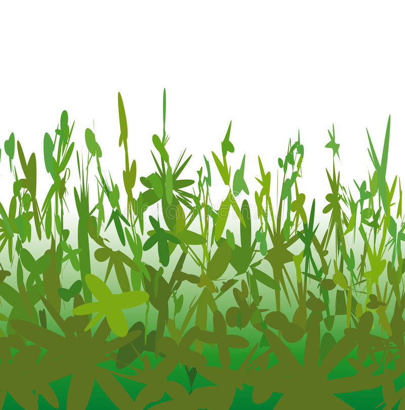 Download Strange Vegetation (vector) Stock Vector - Image: 6282652