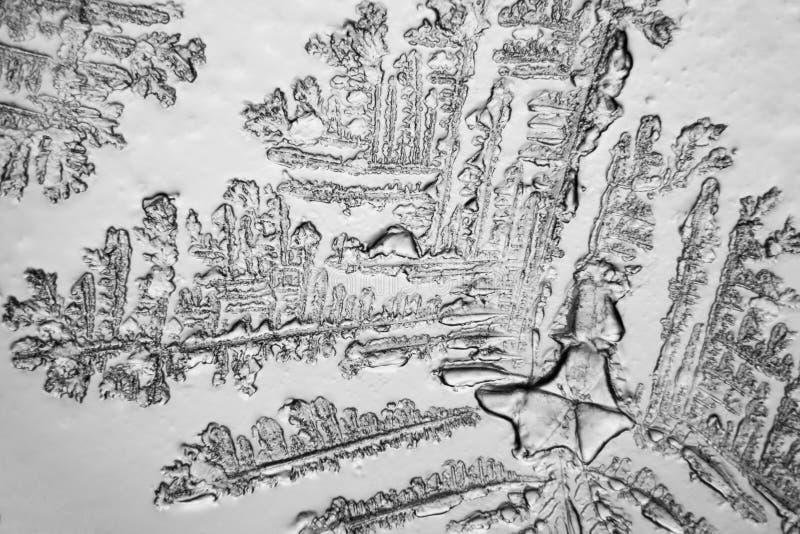 Strappi osservati al microscopio immagine stock