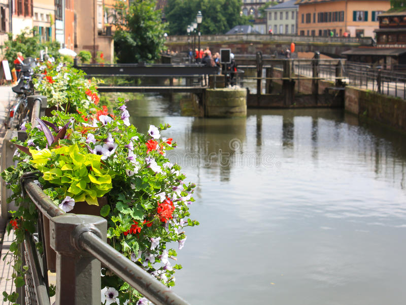 Download Strasbourg flowers stock image. Image of canal, buildings - 18600457