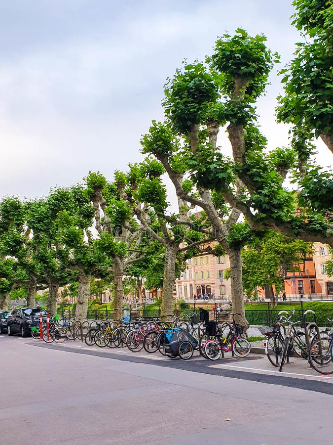 STRASBOURG, FRANCE - June 2019: bicycles parked on the promenade near the canal.  stock photography