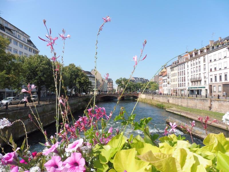 12 67 2000 01 Strasbourg Petite France. Maison Fleurs Eaux ciel Jaunes Roses Alsace Europe stock photos