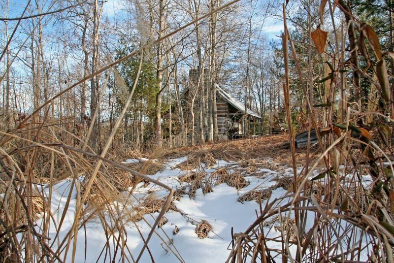 Straszna kabina w drewnach podczas dnia zdjęcie stock