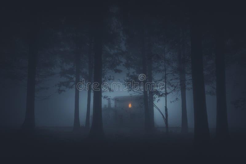 Straszny dom w tajemniczym horroru lesie przy nocą fotografia royalty free