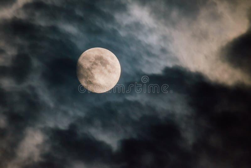 Straszny księżyc w pełni w nocy zdjęcie royalty free