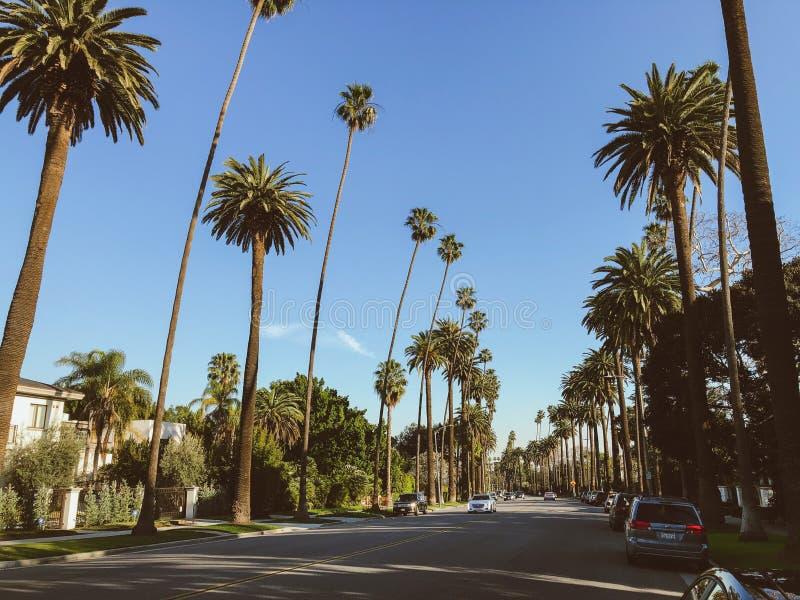 Straten van Beverly Hills, Californi? stock fotografie