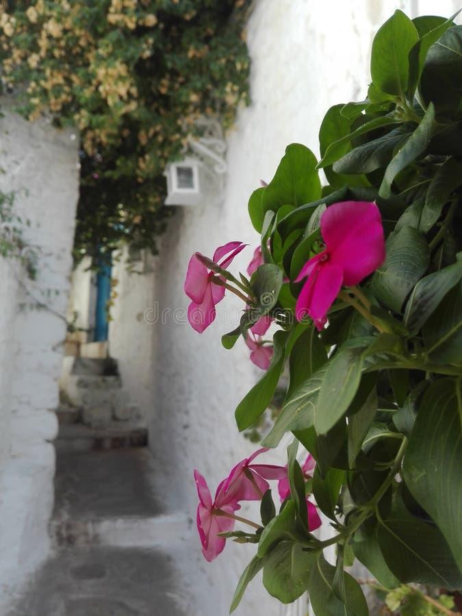 straten van Marmaris royalty-vrije stock fotografie