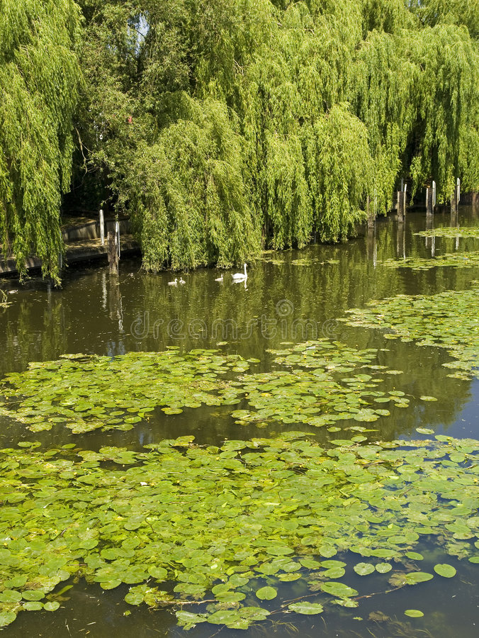 stratford реки avon стоковое фото