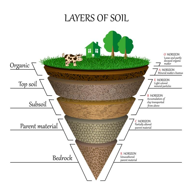 Strati di suolo, diagramma di istruzione Particelle, sabbia, humus e pietre minerali, argilla, modello per le insegne, pagine Vet illustrazione vettoriale