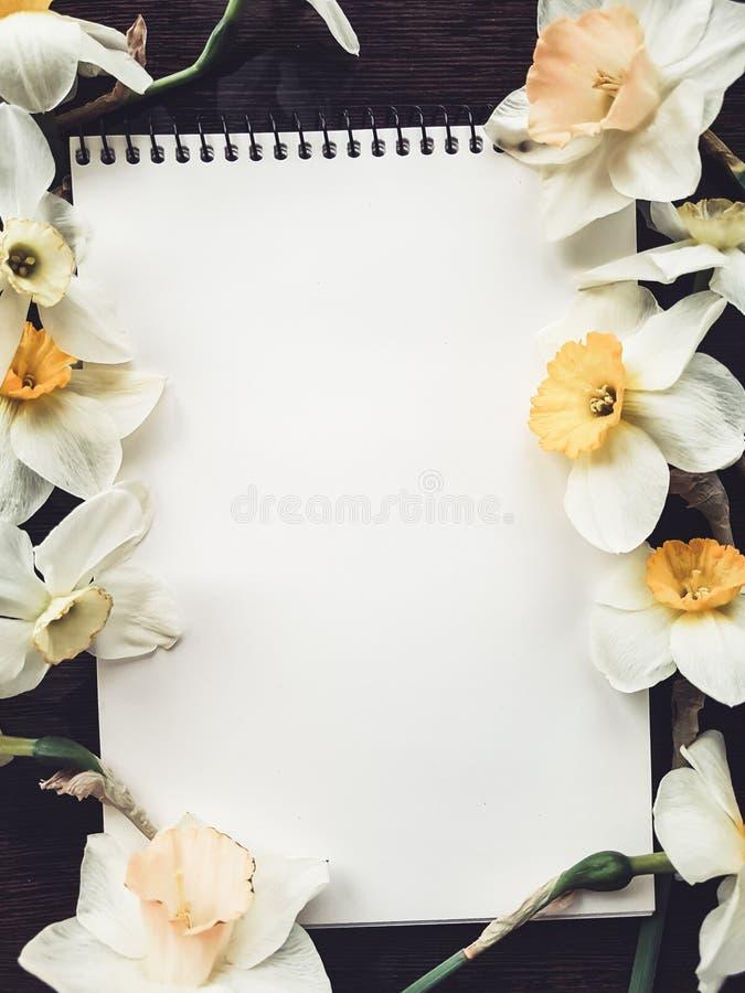 Strato bianco vuoto dell'album con i fiori leggeri immagine stock libera da diritti